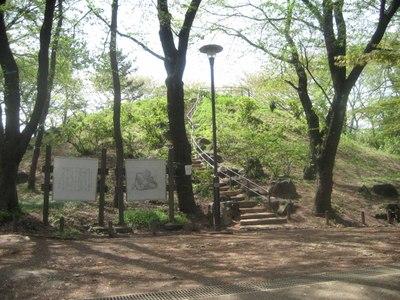 Hakoneyama1