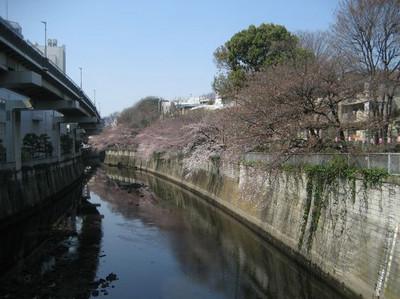 Edogawa